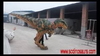 1 2 3 4 5 6 7 8 9 10 11 Realistic Walking Dinosaur Costumes for Adult Buy One Suit Dinosaur Costume By Now Tyrannosaurs rex Costume Mouth open and close synchronized with soundEyes blinking Head up and down Head left and right Neck rotating Walking dinosaur costume Runing Tail swaying View More VelociRaptor Costume …