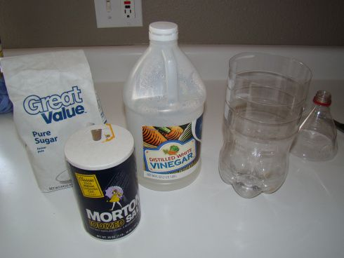 Wasp Traps Make Your Own | Then, add 1/2 teaspoon salt, 1 teaspoon sugar, and 1/2 to 3/4 cup of ...