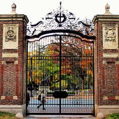 fall at Harvard