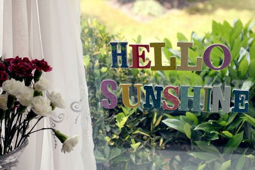 : Facebook Covers, Window, Quotes, Hello Sunshine, Sunshine Facebook, My Life, Covers Photos, Happy Mornings, Happy Things