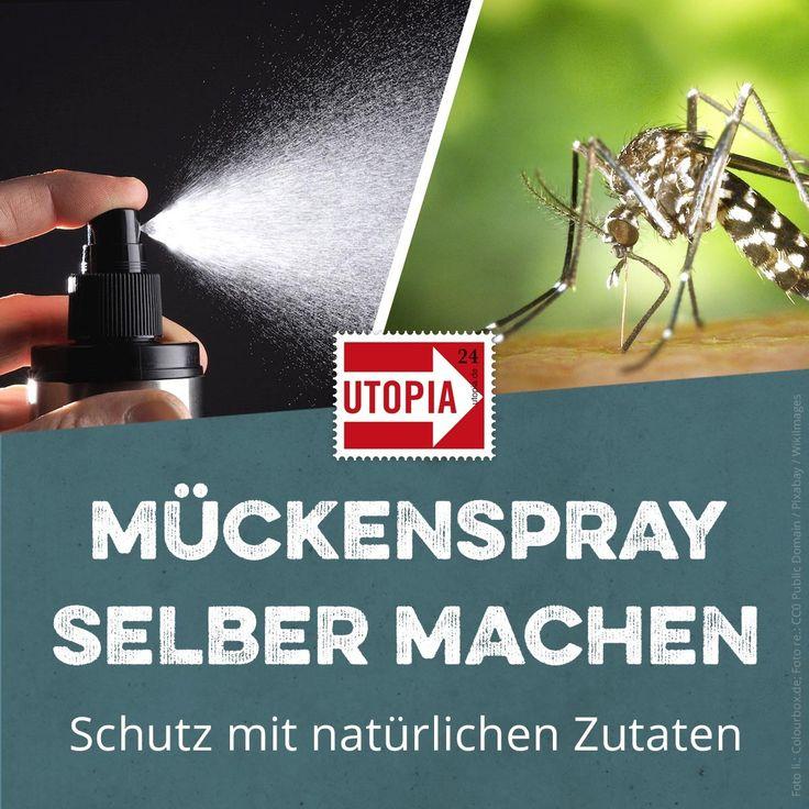 Mückenspray selber machen: Schutz mit natürlichen Zutaten