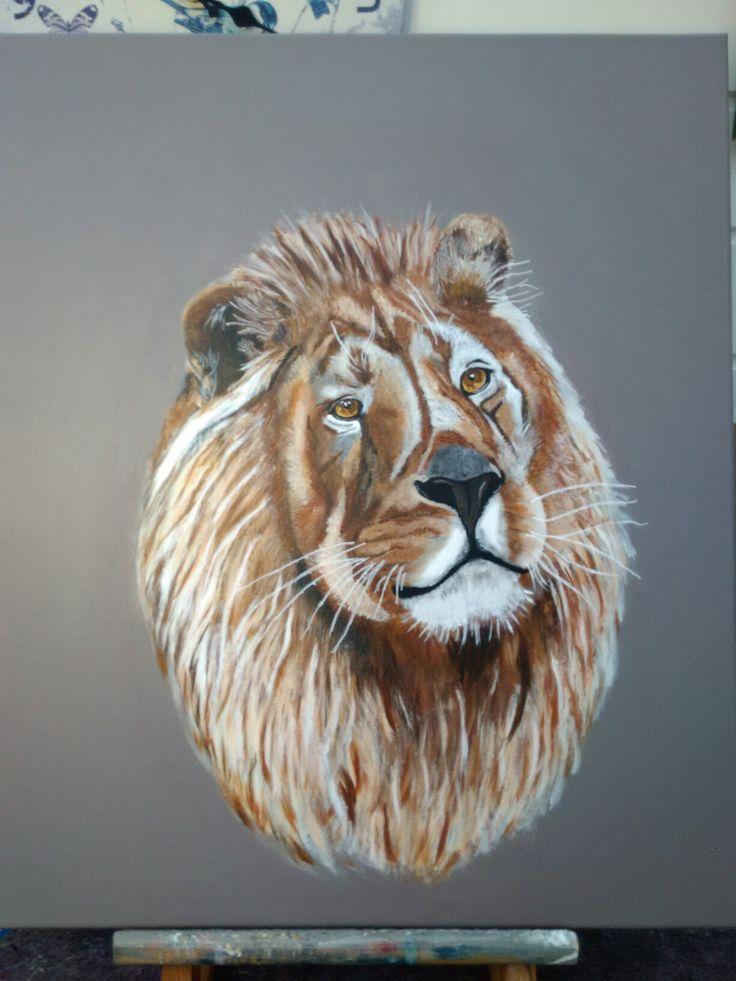 "Nr. 29 ""Lionking"""