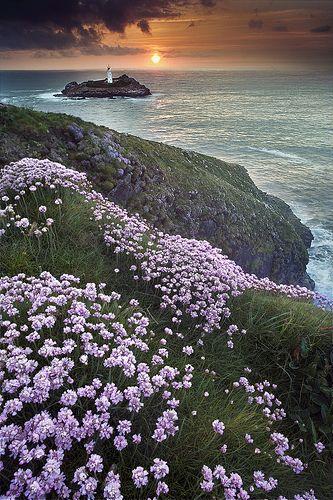 ✯ Sea Coast and Lighthouse - Scotland