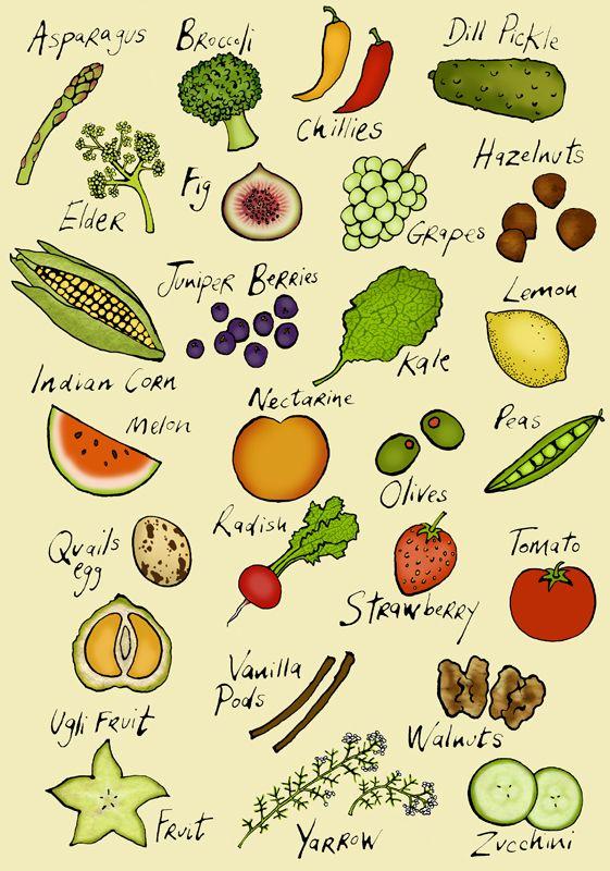 #emmabrownjohn #newdivision #illustration #digital #line #stylised #food #icons