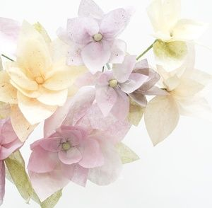Make Scented Paper Flowers With David's Tea Paints