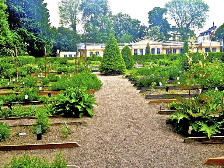Garden of Carl Linneaus in Uppsala