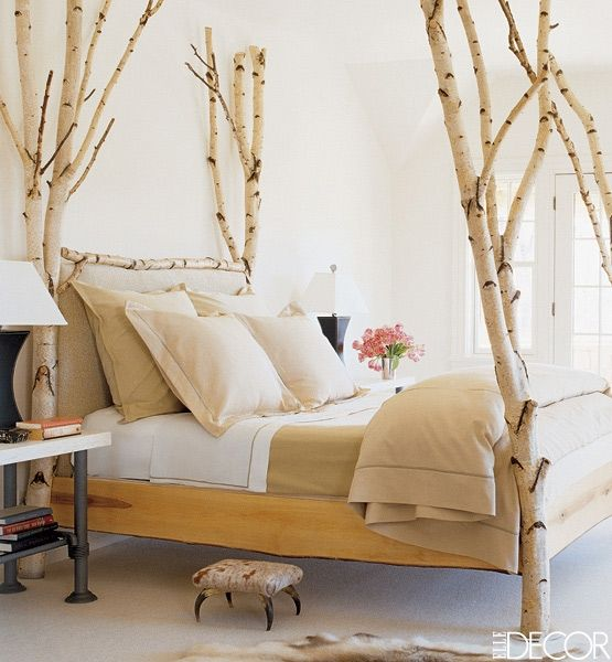 4-poster bed built from birch or aspen trees