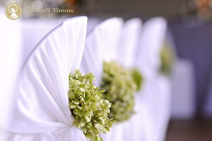 Wedding chairs in classic green and white decor at Rijks Country Estate, Tulbagh. Charnell Timms Photography