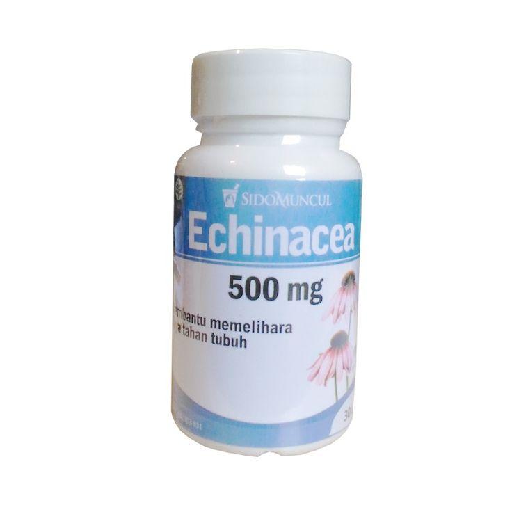Echinacea SidoMuncul - Membantu mengatasi flu, radang tenggorokan, batuk, sinusitis, bronkitis, bengkak bernanah. Di jual murah  http://rumahjamu.com/ispa/28-echinacea-sidomuncul-membantu-mengatasi-flu-radang-tenggorokan-batuk-sinusitis-bronkitis-bengkak-bernanah-di-jual-murah.html  #sidomuncul #echinacea #obatflu #obatbatuk #obatbronkitis