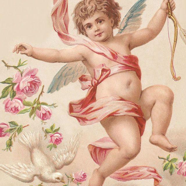 Victorian CHERUB w Dove & PINK ROSES via ourcottagegarden.com