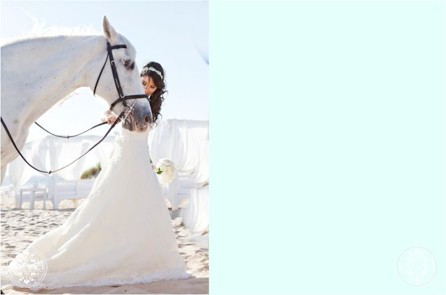 Our Lovely Pink World |Wedding beach | bride and the horse | mint