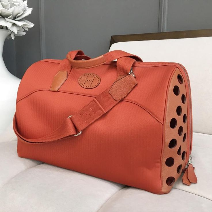 Hermès pet carrier