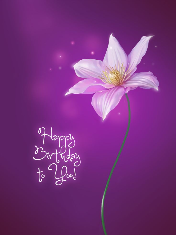 Purple Flower Card - Birthday Cards Application