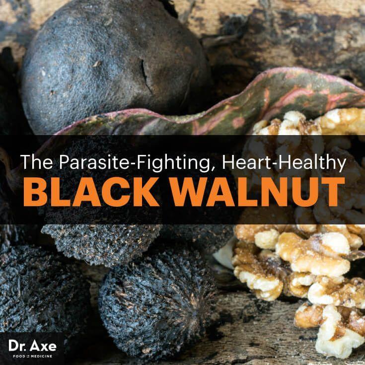 Black walnut - Dr. Axe http://www.DrAxe.com #health #holistic #natural