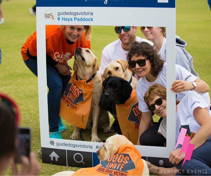 Guide Dogs Victoria / Dogs Unite Walk 2015, Perfect Events