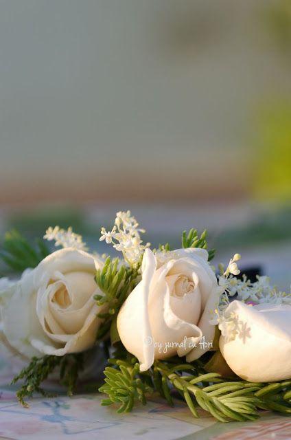 #trandafir #trandafirialbi de gradina pentru sotul meu