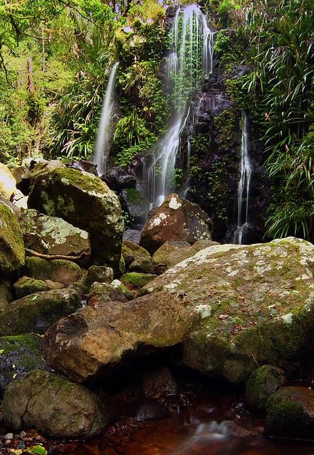 Chalahn Falls by greenplasticdave, via Flickr; Lamington National Park, Australia