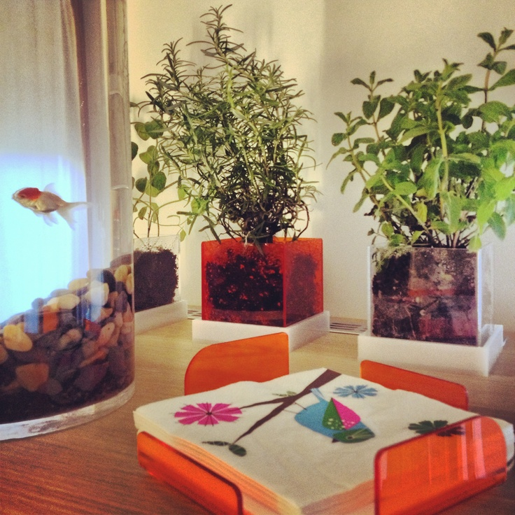 Gabriella's house with #transparant and #colorfull #design in #plexiglas #plex #designtrasparente