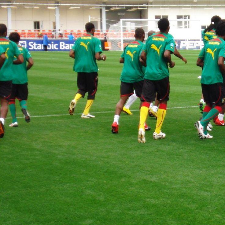 Le Cameroun affronte la Gambie, le 6 septembre 2015, dans le cadre de la deuxième journée des éliminatoires de la Coupe d'Afrique des nations de football (Can) prévue