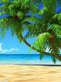 Райский остров - анимация на телефон №1169543