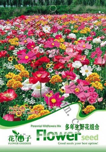 Смешайте минимальные $5 Цветок Многолетнее диких цветов Семена, оригинальной Упаковке 200 шт. Сад бонсай семена цветов, легко Расти семена цветов