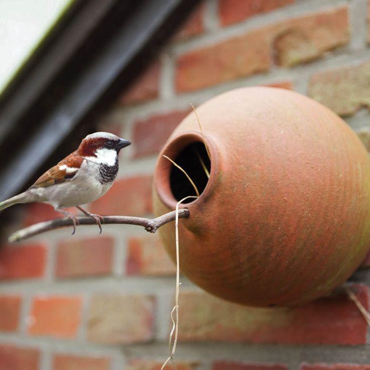 Der Vogeltopf im antiken Design ist eine künstliche Nisthöhle, die in Holland schon im 17. Jahrhundert unter dem Namen Vogelpot zum Einsatz kam. Er eignet sich prima für kleine Vögel wie Meisen aller Art, Spatzen, Rotkehlchen oder...