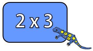 Salamander times table image