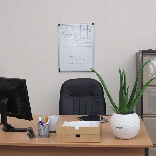 Check out these 15 best office desk plants! They are small and can easily fit into corners, tabletops, and desks.