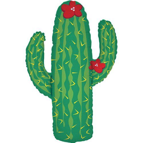 images/15435P-cactus-500.jpg
