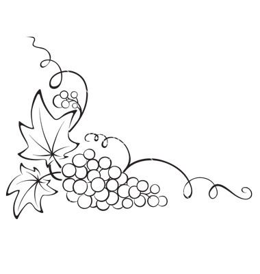 Design+element+-+grapevine+vector+831735+-+by+imagination13 on VectorStock®