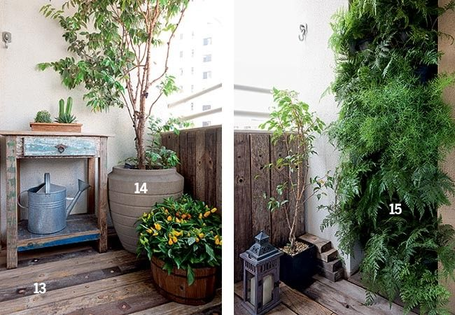 jardim vertical vasos meia lua : jardim vertical vasos meia lua:1000 ideias sobre Samambaia Aspargos no Pinterest