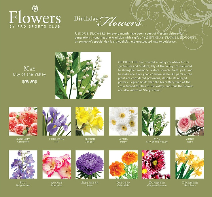 Flowers Of Each Month: Birthday Flowers For Each Month #garden