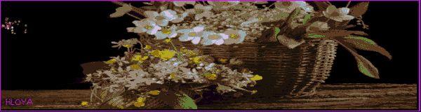 Цветочный фейверк - Красивые цветы - Красивые картинки анимации
