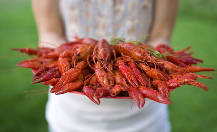 swedish crayfish party