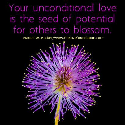 eaf17bb1749526609194d93cfc7c6bf1--unconditional-love-foundation.jpg
