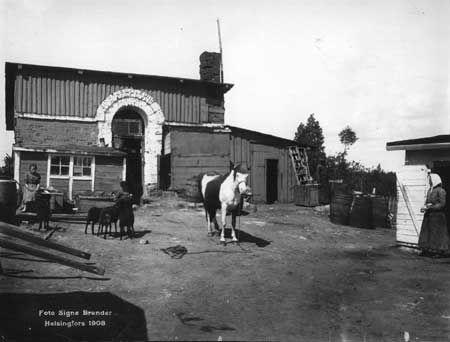 Entisen Kaartin ruutikellarin tontti Hietaniemessä 1908. Tässä asui perhe hevosineen ja lampaineen. Kuva: Signe Brander.