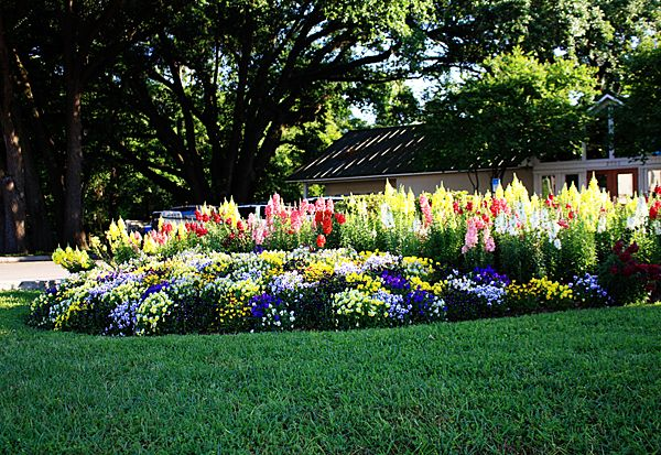 front yard landscape design layouts Home About Services