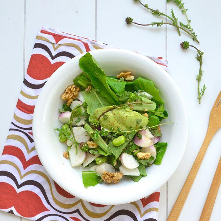 Salade de printemps au navet et aux gousses de fèves / Spring Turnips and Bean Pods Salad