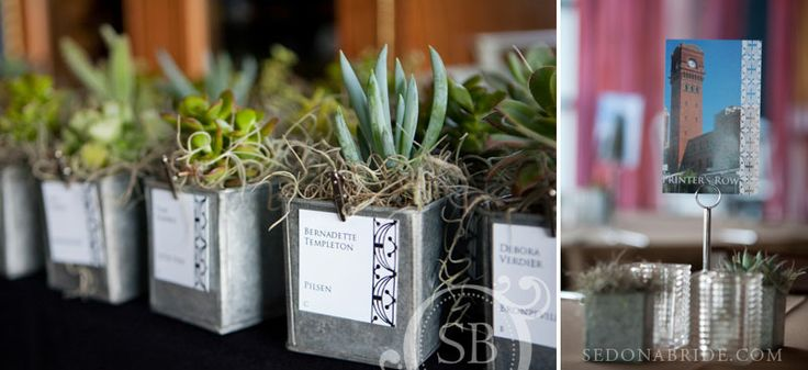 succulent wedding favors and custom designed post cards with travel locations as table markers ... photography by sedona bride photographers ~ LOVE anything ' succulents'