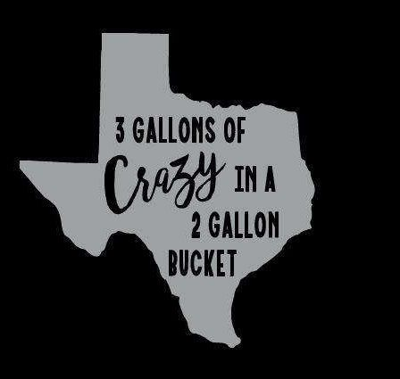 Texas girl Southern lady fun crazy good times svg automatic