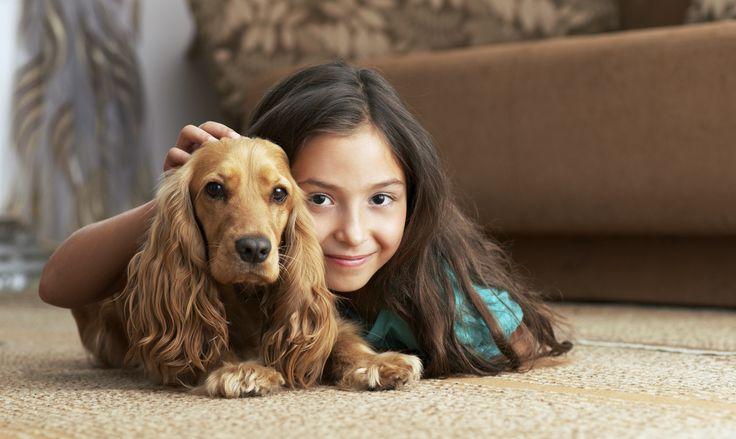 Pet Allergies: A Gander at Dander | Allergic Living