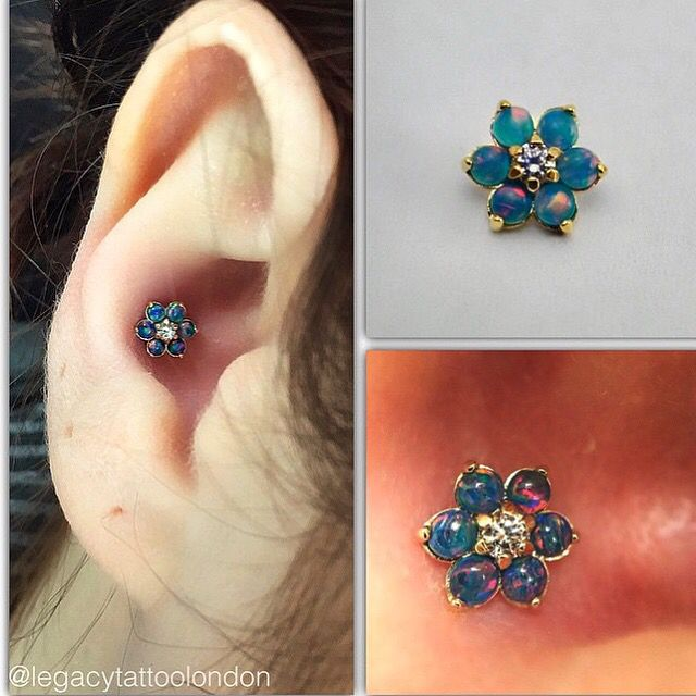 how to become a piercer in ontario