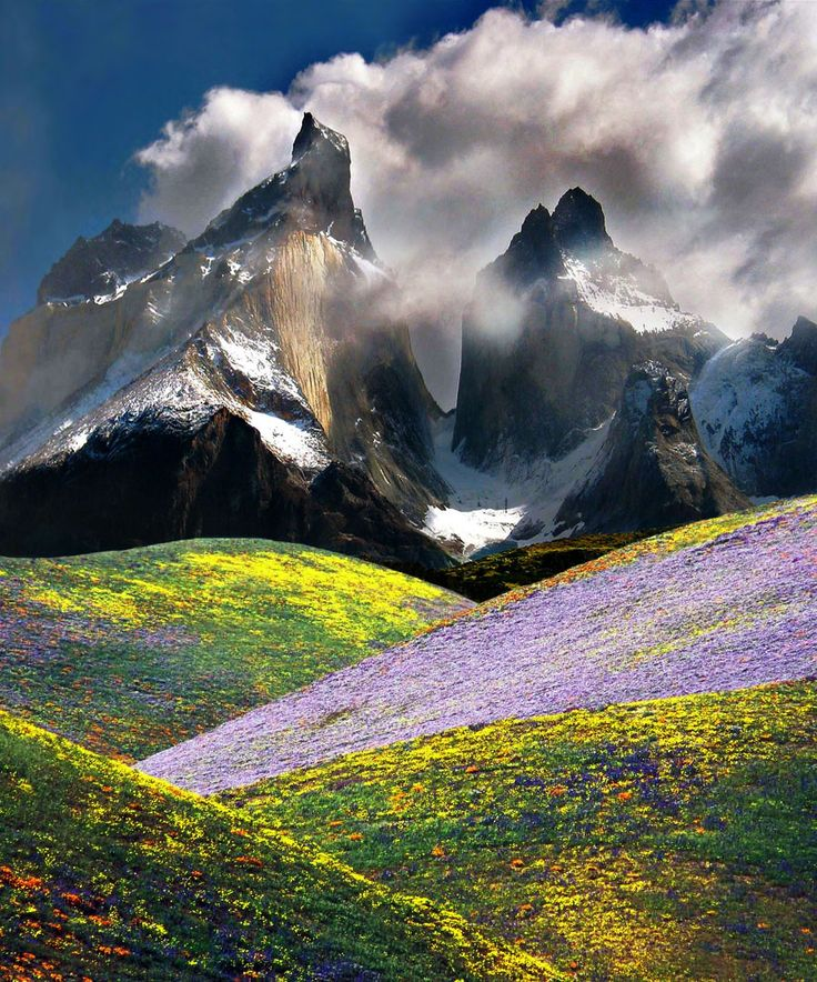 Patagonia Chile, mountain meadow