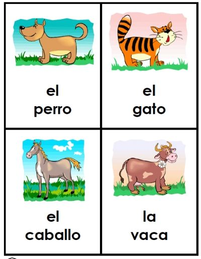Spanish animal vocabulary. 40 large cards -- animals in Spanish for young ones -- completely FREE and easy to download at PrintableSpanish.com