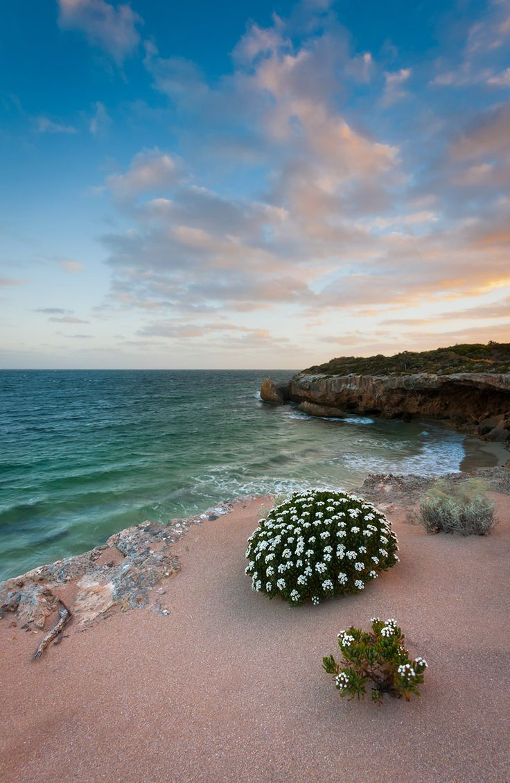 Penguin Point, Yorke Peninsula, Australia by Trace Connolly  A small headland at the southern end of Marion Bay on lower Yorke Peninsula. Marion Bay is often a base for holiday makers that are traveling into Innes National Park just south of here.  https://f11news.com/03/09/2017/penguin-point-yorke-peninsula-australia-by-trace-connolly