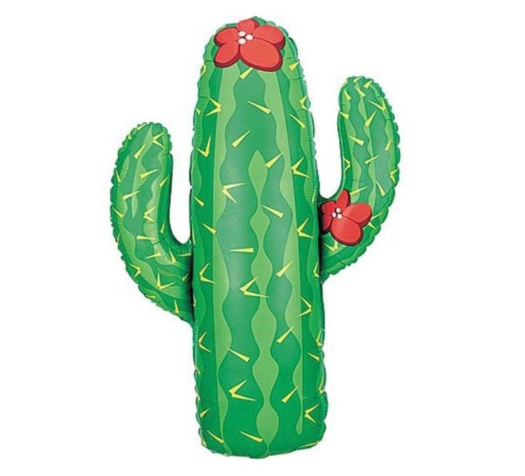 Cactus Foil Balloons – Lucky Lulu Party Shop