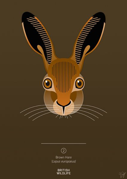 brown hare by rubbish designer