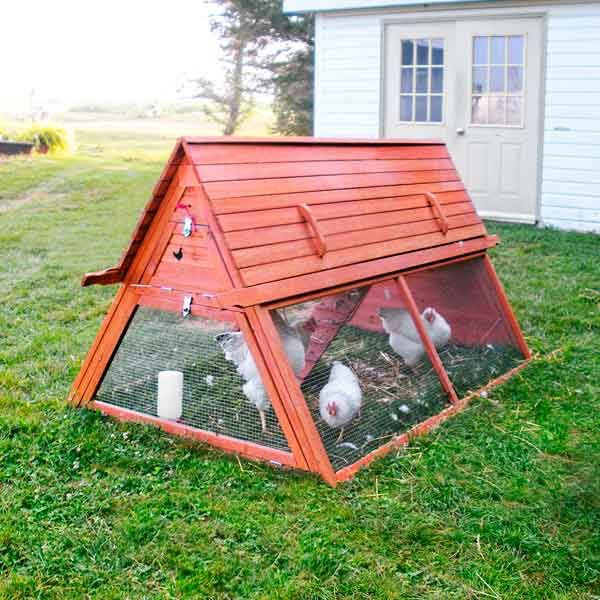 17 best ideas about portable chicken coop on pinterest