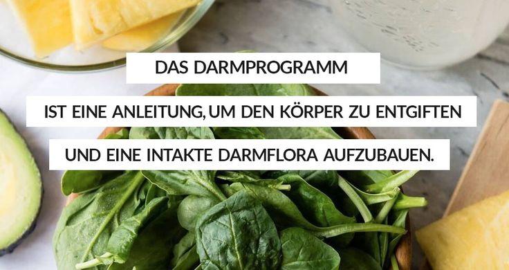 Darmprogramms — Superfood Gesund Programme