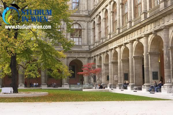 В Венский Университет не трудно поступить иностранцу. Также в Венском Университете присутствует помощь во время обучения для иностранцев.